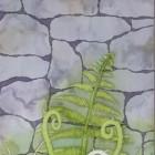 New Ferns thumbnail