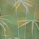 Sun on Bamboo thumbnail