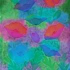 Sunlit Poppies thumbnail