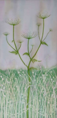 Queen Annes Lace with Lady Smocks and Stitchwort