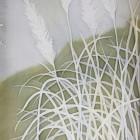 Giant Grasses, Nepal I thumbnail