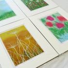 mounted-prints thumbnail