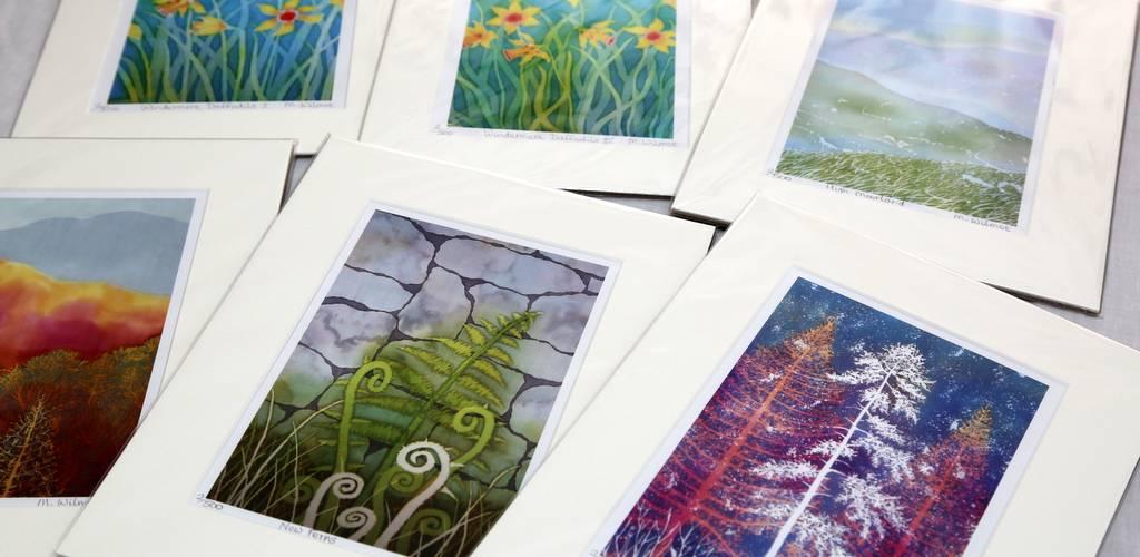 Hue and Dye prints - Margaret Wilmot