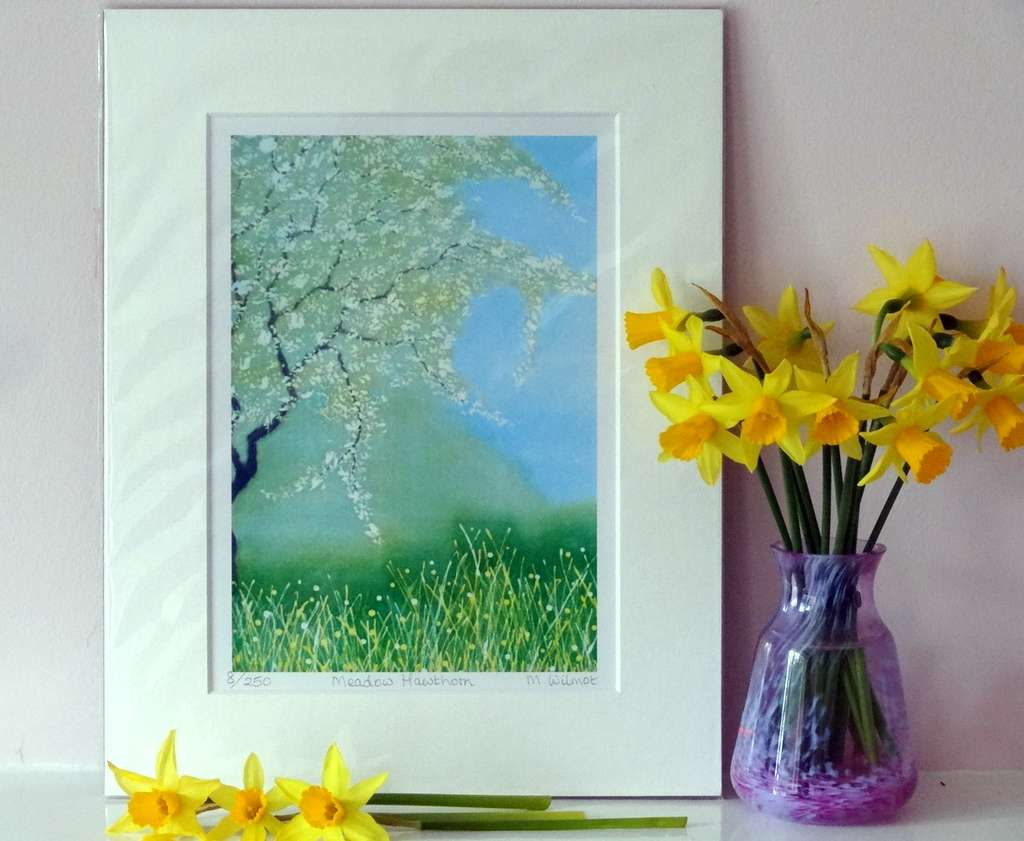 Meadow Hawthorn, signed limited edtion print, from an original silk painting, 22 x 28 cm
